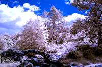 Infrared.......... 590nm & 720nm